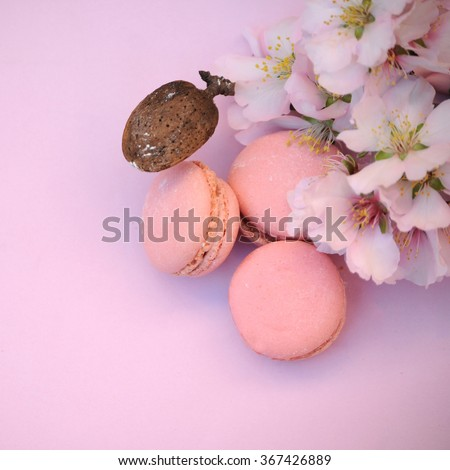 Foto d'archivio: French Delicacy Macaroons Colorful With Spring Blossom Bouquet Flowers Narcissus