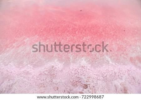 Tuz pembe göl renkli ünlü antioksidan Stok fotoğraf © ElenaBatkova