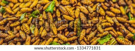 Insecten bugs street food Thailand banner Stockfoto © galitskaya