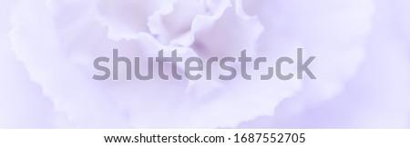 Mavi karanfil çiçek çiçeklenme soyut Stok fotoğraf © Anneleven