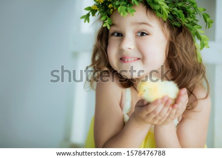 Close-up of a porter girl 5-7 years old in a yellow dress holding on hands a small yellow chicken Stock photo © ElenaBatkova