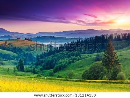 Beauty summer evening in the mountains Stock photo © olira