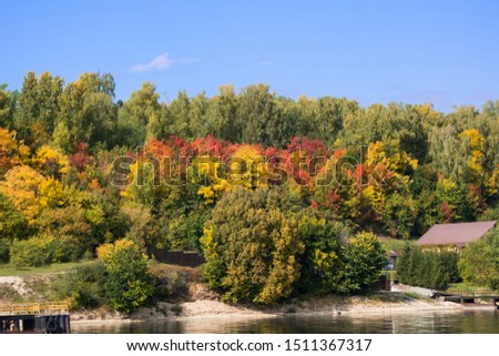 Fall colors some trees red, others yellow in forest near Sedona. Stock photo © Klodien