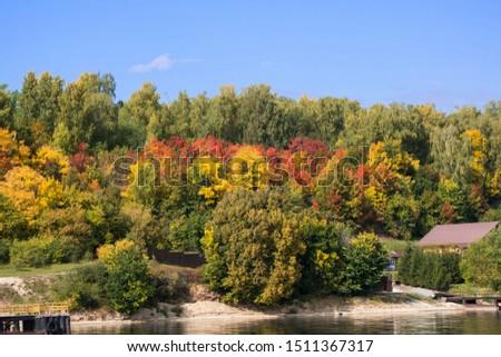 őszi · színek · fák · piros · citromsárga · erdő · bézs - stock fotó © Klodien