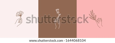 Hand mooie bladeren vrouw boom Stockfoto © taden