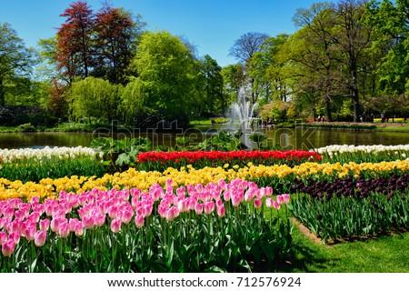 ストックフォト: Famous Flowers Park Keukenhof In Netherlands Also Known As The G