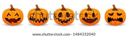 szett · aranyos · ősz · illusztrációk · vektor · kézzel · rajzolt - stock fotó © voysla