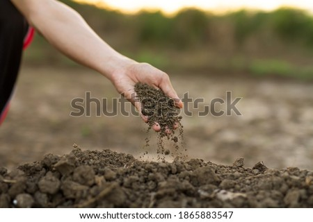 farmer checking soil quality of fertile agricultural farm land stock photo © stevanovicigor