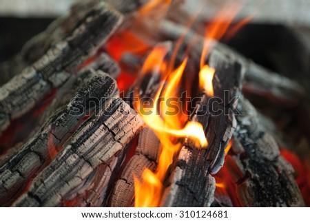 美しい 火災 炎 木材 抽象的な 自然 ストックフォト © mcherevan