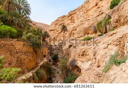 oase · woestijn · Tunesië · zomer · afrika · tropische - stockfoto © zhukow