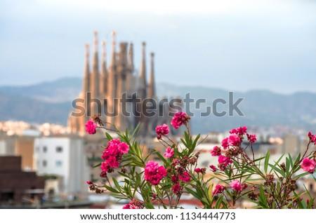 unfinished gothic cathedral Sagrada Familia in Barcelona, Spain Stock photo © joannawnuk