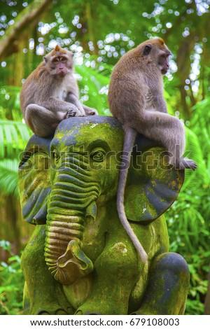 Elefánt szobor majom erdő Bali sziget Stock fotó © boggy
