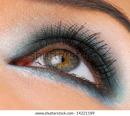 beautiful macro shot of female eye with ceremonial makeup perfect shape of eyebrows eyeliner and p stock photo © serdechny