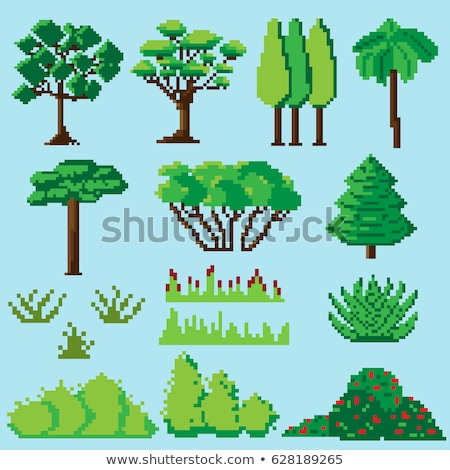 Pixel Tree and Bushes from 8 Bit Graphics Vector Stock photo © robuart
