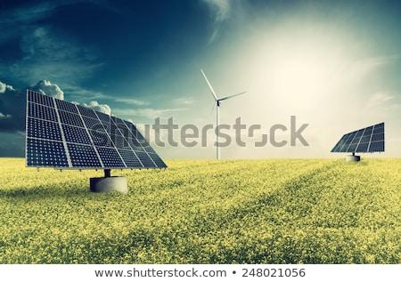 ветер энергии растений области Сток-фото © elxeneize