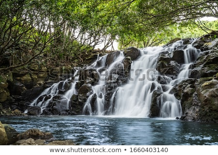 Vacoas Waterfall In Chamarel, Mauritius  Stock photo © AndreyPopov