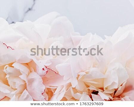 Bukiet kwiaty luksusowe marmuru ślub przypadku Zdjęcia stock © Anneleven