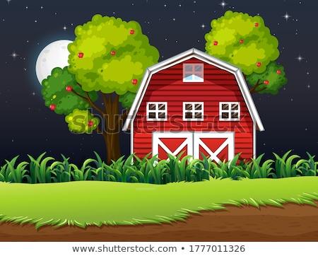 Granja escena granero paja noche ilustración Foto stock © bluering