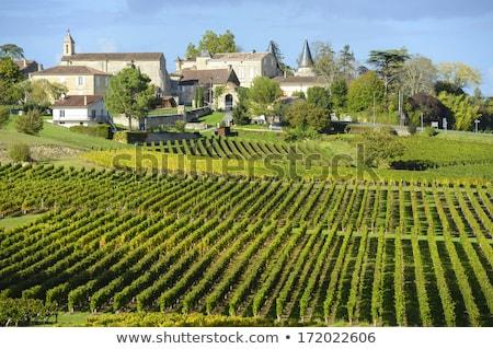 aldeia · rua · França · estreito · em · torno · de · canto - foto stock © ldambies
