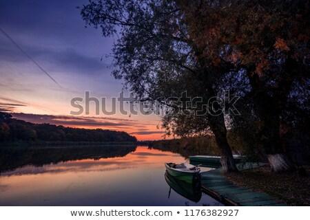 Kereste göl su ağaç bahar çim Stok fotoğraf © basel101658
