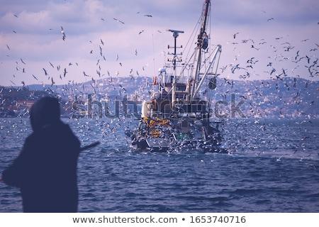 Photo stock: Pêche · voile · corde · tension · bois · poissons