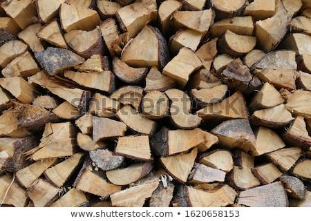 bûcheron · bois · bouleau · mains · arbre - photo stock © pashabo