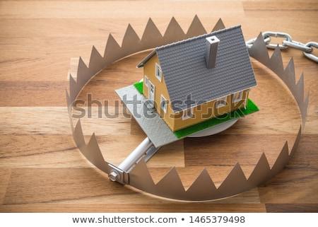 Hipoteca armadilha falso negócio madeira mouse Foto stock © creisinger