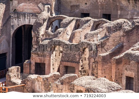 colosseum detail stock photo © blanaru