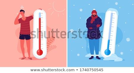 extremes with snowflakes Stock photo © dolgachov