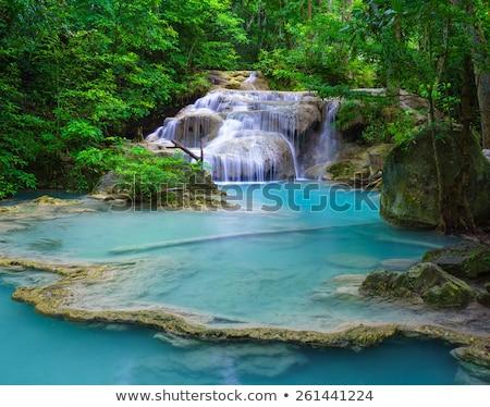 vízesés · fa · tavasz · fa · természet · levél - stock fotó © witthaya