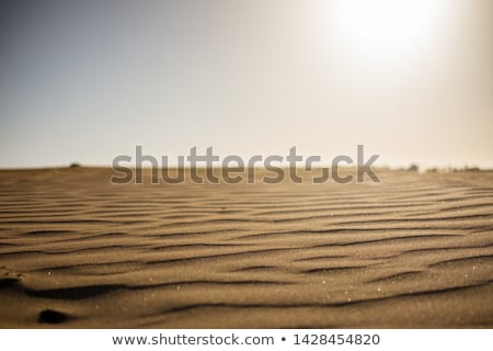 Foto stock: Canárias · marrom · areia · da · praia · textura · macro
