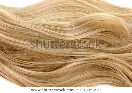 Combing blond hair stock photo © sumners