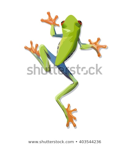 Green tree frog cartoon Stock photo © dagadu