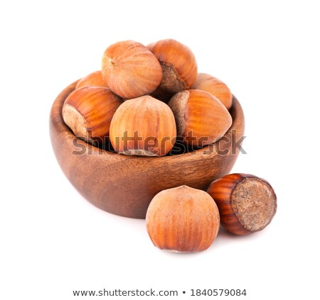 Nuts set. Stock photo © Leonardi