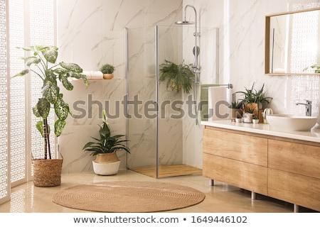 ストックフォト: ��代的なバスルーム
