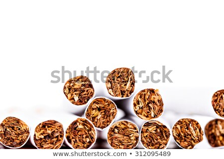 Close up of a cigarette against a white background stock photo © wavebreak_media