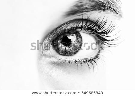 眼 まぶた 近い 詳細 男性 ストックフォト © claudiodivizia