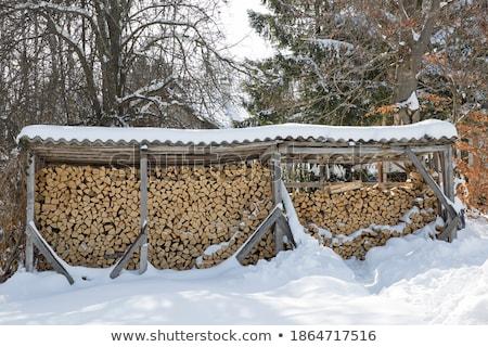Bois de chauffage hiver paysage texture arbres Photo stock © elxeneize
