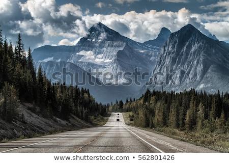 Berg weg asfalt bergen bos bewolkt Stockfoto © saddako2