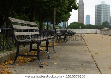 Chicago · sziluett · nyár · panoráma · panorámakép · kép - stock fotó © andreykr