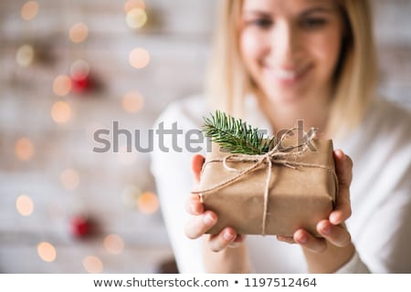 Nature Holiday Gift Stock photo © Lightsource