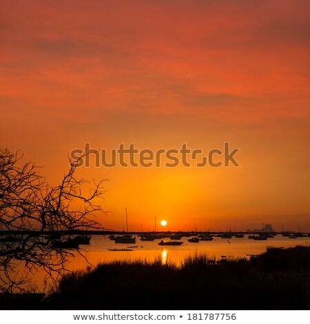 Formentera sunset in Estany des Peix with Ibiza Es vedra Stock photo © lunamarina