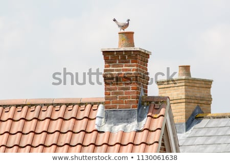 Chimney stack Stock photo © jeancliclac
