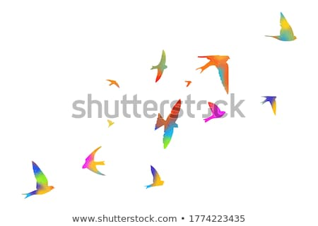 Színes absztrakt madár művészi élet minta Stock fotó © Akhilesh