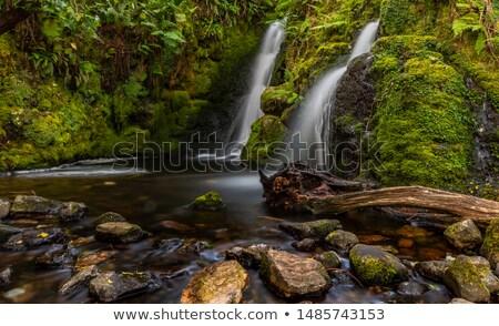 doble · cascada · agradable · verano · agua · sol - foto stock © thomaseder