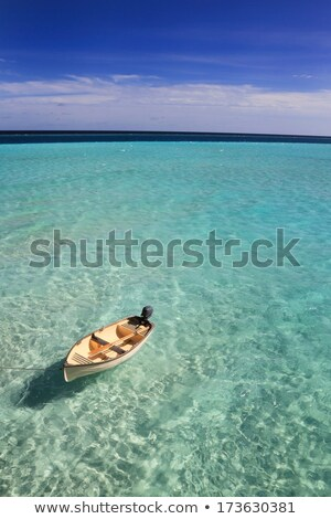 лодка Мальдивы небольшой гребля синий Сток-фото © Joningall