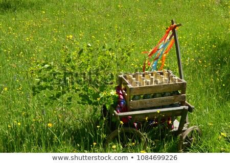Verano ilustración árbol primavera mariposa paisaje Foto stock © adrenalina
