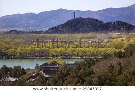 yu feng pagoda summer palace willows beijing china stock photo © billperry