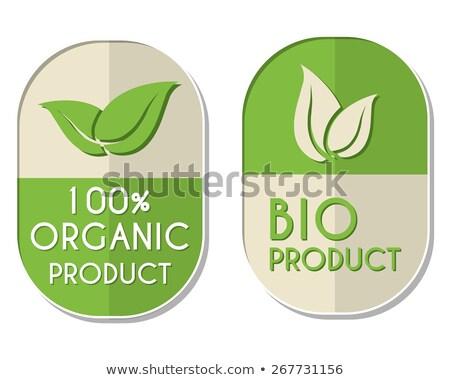 100 percent organic and bio product with leaf sign, two elliptic Stock photo © marinini