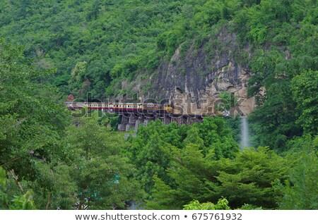 Morte ferrovia Thailandia accanto rupe albero Foto d'archivio © romitasromala